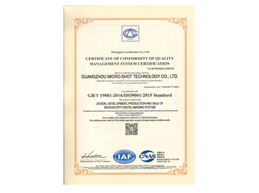 ISO9001:2015 English Certificate