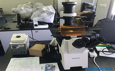 Inverted fluorescence microscope helps Huazhong University of science and technology to detect livin