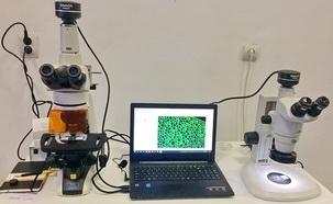 Nikon E200 Fluorescence Microscopy Imaging Solutions