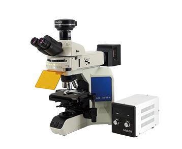 Upright Fluorescence Microscope