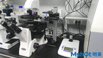 倒置荧光显微镜MF52在深圳大学推动显微注射法发展1.jpg