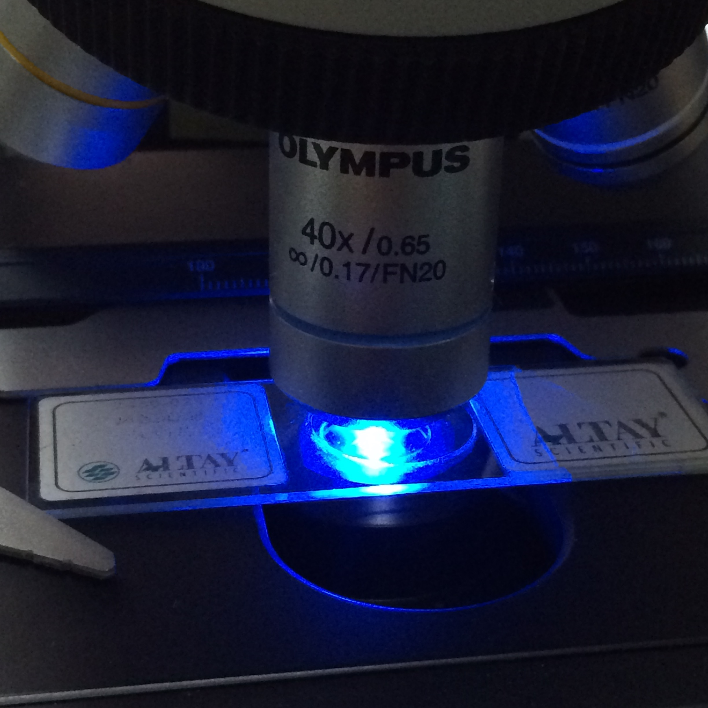 mshot_uv_led_Fluorescence_illumination.jpg