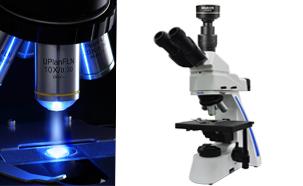 Mshot_mf31_led_fluorescence_microscope_tuberculosis.jpg